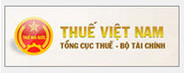 thue-vn